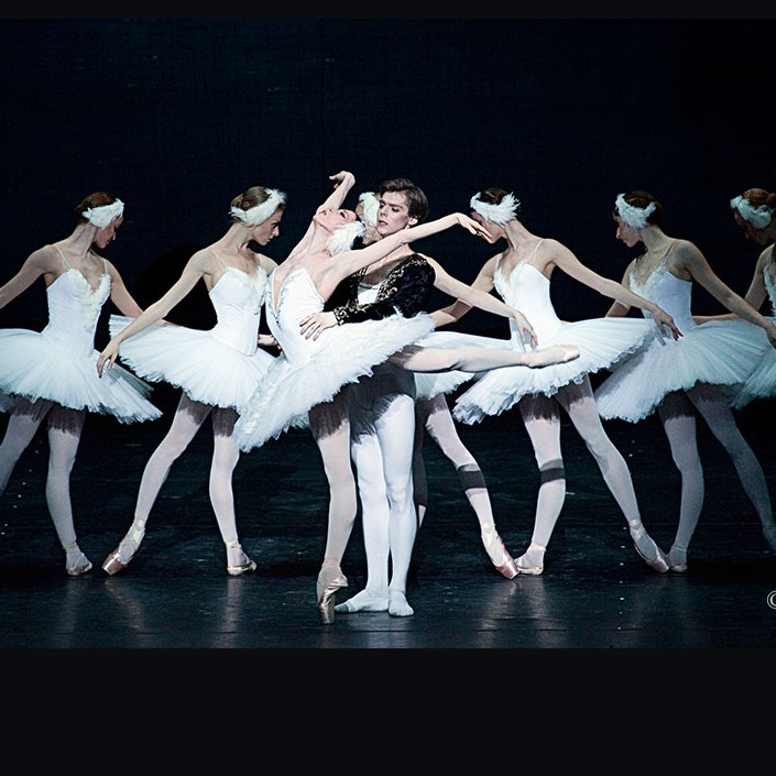 The Swans of the Mariinsky Theater