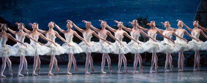 a-corps-de-ballet,-swan-lake